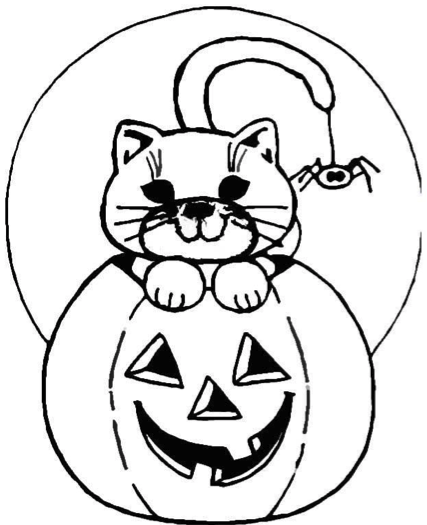 Halloween Pumpkin and Cat
